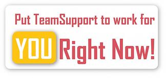 Put TeamSupport to work for you