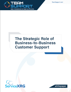 Strategic Role of B2B support