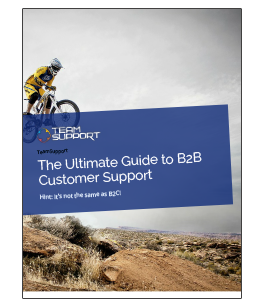 eBook-B2B-guide-thumb.png