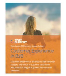 eBook-customer-experience-thumb.png