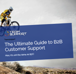 ultimate-b2b-customer-support-eBook