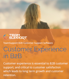 eBook-customer-experience-thumb-sm-1