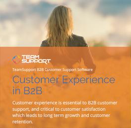 eBook-customer-experience-thumb-sm